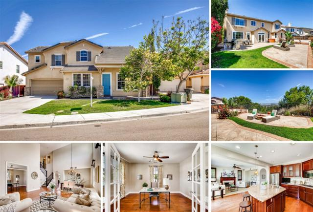 1428 Dolphin Court, San Marcos, CA 92078 (#170037123) :: Hometown Realty