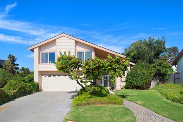 11069 Paseo Castanada, La Mesa, CA 91941 (#170037431) :: Neuman & Neuman Real Estate Inc.