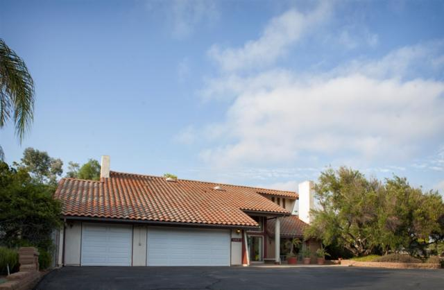347 Spanish Spur, Fallbrook, CA 92028 (#170039585) :: Whissel Realty