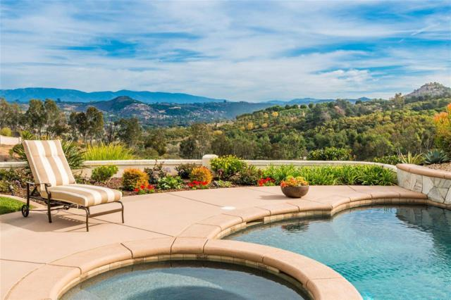 31312 Lake Vista Terrace, Bonsall, CA 92003 (#170040996) :: The Marelly Group | Realty One Group
