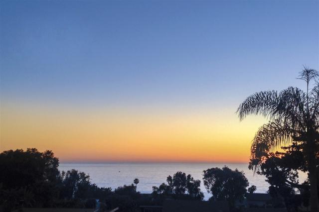 345 El Amigo, Del Mar, CA 92014 (#170041108) :: Neuman & Neuman Real Estate Inc.