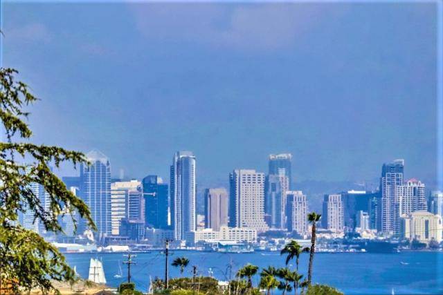 1261 Moana Drive, San Diego, CA 92107 (#170041879) :: Whissel Realty