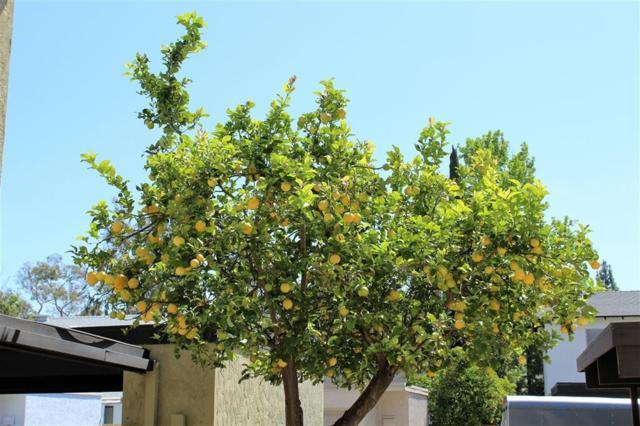 10608 Esmeraldas, San Diego, CA 92124 (#170042641) :: Neuman & Neuman Real Estate Inc.
