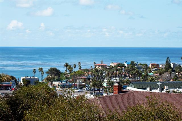 134 Brookdale Place, Solana Beach, CA 92075 (#170042803) :: Neuman & Neuman Real Estate Inc.