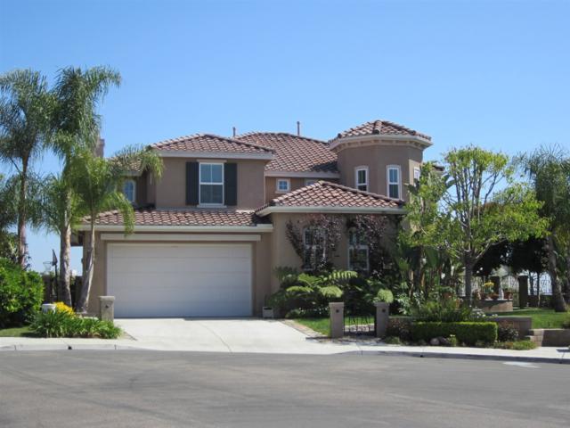 864 Hunters Ridge Pl, Chula Vista, CA 91914 (#170042836) :: Whissel Realty