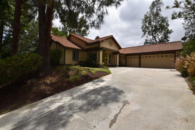 2351 Willowbrook St, Escondido, CA 92029 (#170043039) :: Allison James Estates and Homes