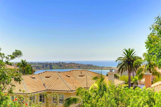 969 Blackstilt Ct, Carlsbad, CA 92011 (#170043324) :: The Marelly Group | Realty One Group