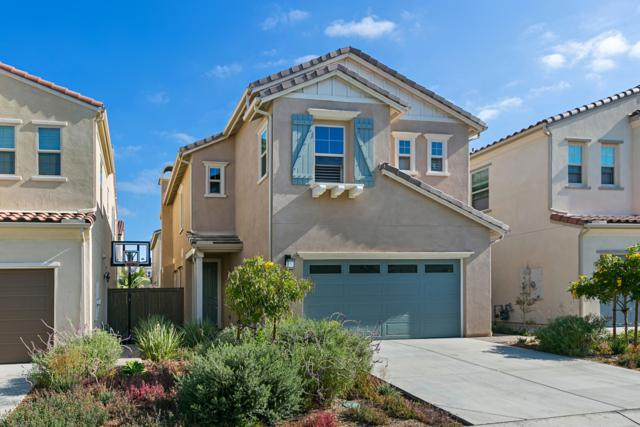 1124 Cherry Tree Lane, Vista, CA 92084 (#170043495) :: The Marelly Group | Realty One Group