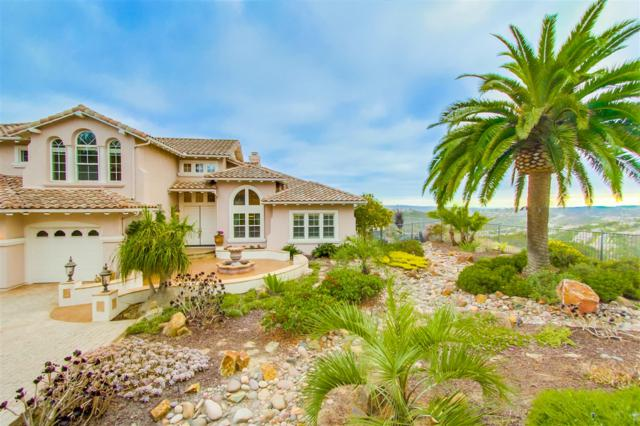 2800 Rancho Costero, Carlsbad, CA 92009 (#170043512) :: The Marelly Group | Realty One Group