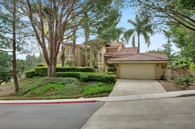 14510 Caminito Saragossa, Rancho Santa Fe, CA 92067 (#170043972) :: Beatriz Salgado