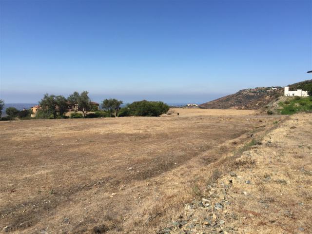 Lot 90 El Brazo #90, Rancho Santa Fe, CA 92067 (#170044416) :: Coldwell Banker Residential Brokerage