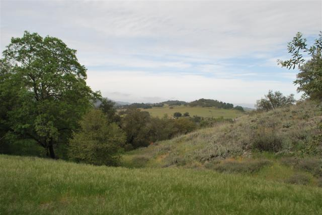 3.37 ACRES Payson Drive #51, Julian, CA 92036 (#170046547) :: Beachside Realty