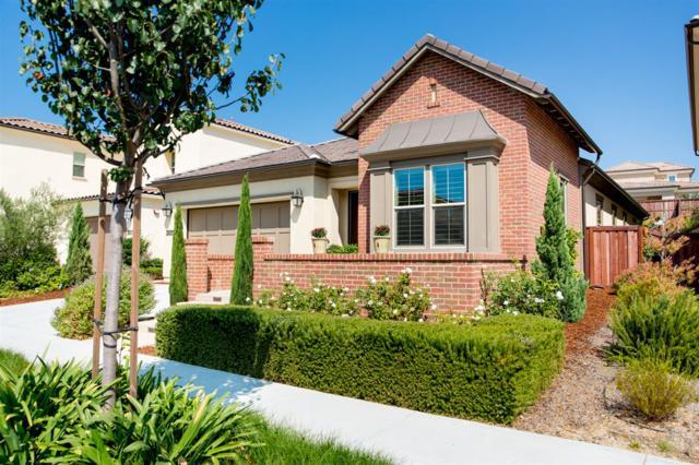 3622 Buck Ridge Ave, Carlsbad, CA 92010 (#170048648) :: Klinge Realty