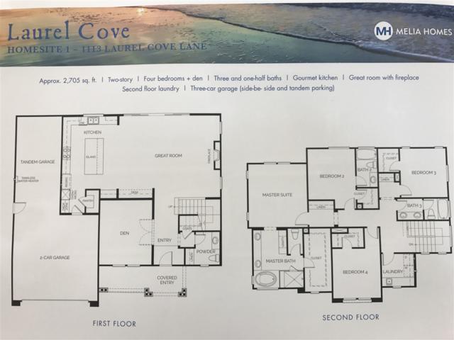 1113 Laurel Cove Lane, Encinitas, CA 92024 (#170048908) :: Klinge Realty