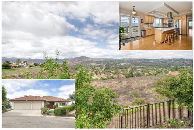 3811 Pinnacle Pl, Escondido, CA 92025 (#170049068) :: Carrington Real Estate Services