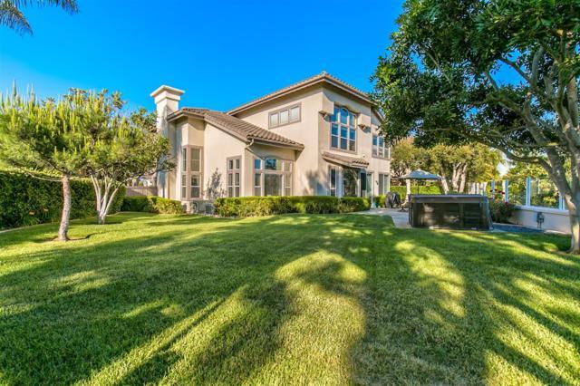 6991 Zebrina Pl, Carlsbad, CA 92011 (#170049774) :: Coldwell Banker Residential Brokerage