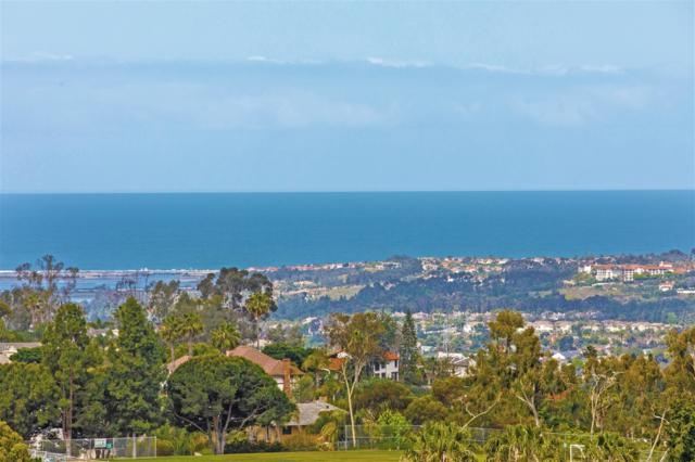 7008 Corintia St., Carlsbad, CA 92009 (#170050339) :: The Houston Team | Coastal Premier Properties