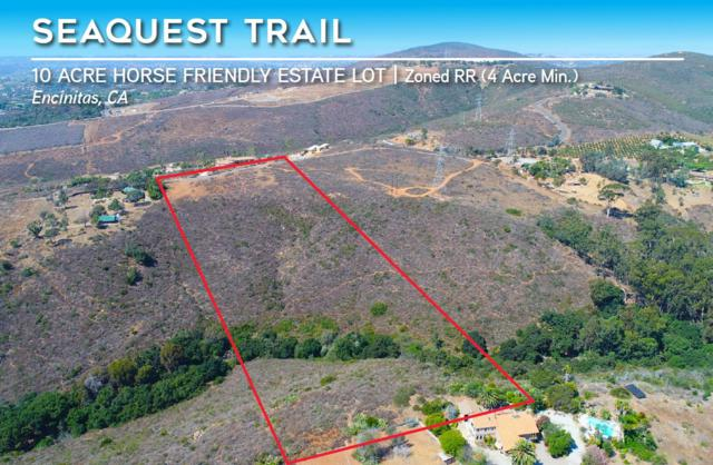 1903 Seaquest Trail #00, Encinitas, CA 92024 (#170051991) :: Cane Real Estate