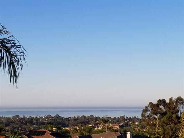 544 Lynwood Drive, Encinitas, CA 92024 (#170053915) :: Beachside Realty