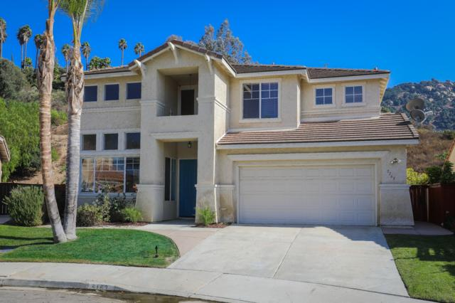 5163 River View Ct, Fallbrook, CA 92028 (#170054601) :: Allison James Estates and Homes
