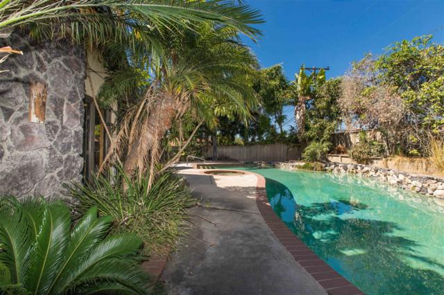 840 Sunrich, Encinitas, CA 92024 (#170054630) :: Beachside Realty
