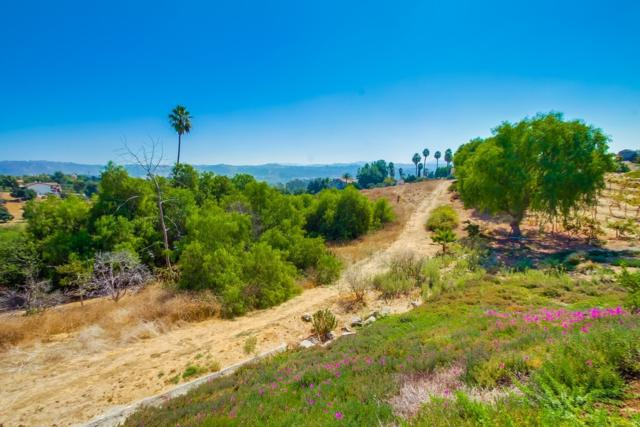 000 Rancho Anita Rd #11, Fallbrook, CA 92028 (#170054732) :: Allison James Estates and Homes