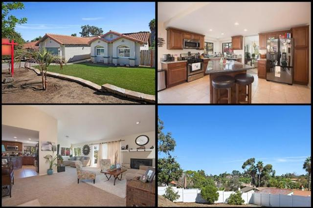 1729 Anza Ave, Vista, CA 92084 (#170054782) :: Allison James Estates and Homes