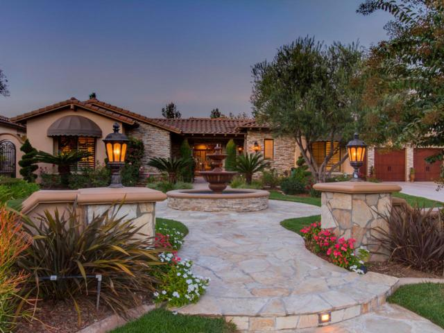 3349 Mendenaro Ct., Fallbrook, CA 92028 (#170054808) :: Allison James Estates and Homes