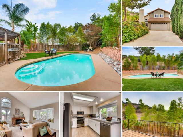 325 Winters Court, San Marcos, CA 92069 (#170054841) :: The Houston Team | Coastal Premier Properties