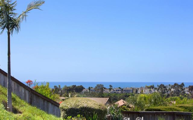 7219 Wisteria Way, Carlsbad, CA 92011 (#170054842) :: The Houston Team | Coastal Premier Properties