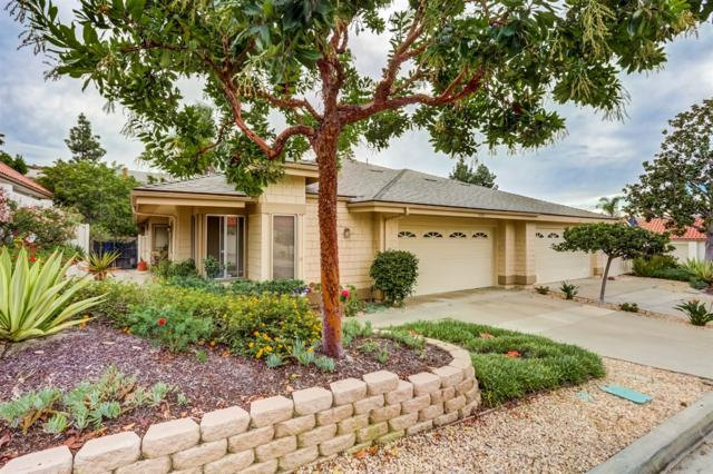 4205 Dusk Ln, Oceanside, CA 92056 (#170057803) :: Whissel Realty