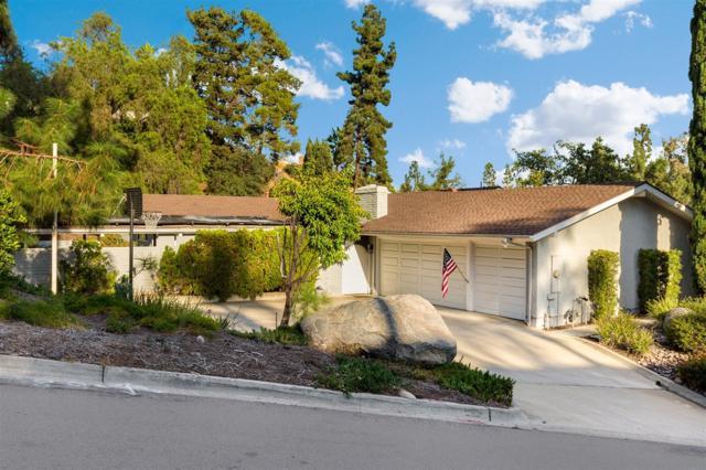 9910 Grandview Dr, La Mesa, CA 91941 (#170058947) :: Teles Properties - Ruth Pugh Group