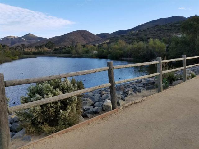546 Sweet Fennel Rd, San Marcos, CA 92078 (#170059622) :: Hometown Realty