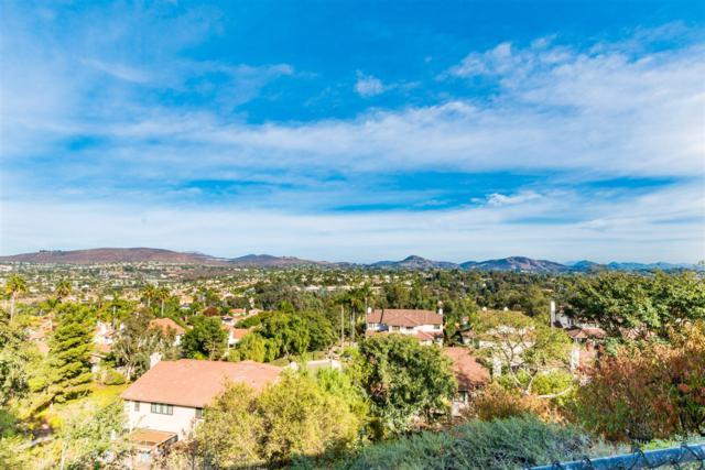 2317 Summerhill Dr, Encinitas, CA 92024 (#170059729) :: Coldwell Banker Residential Brokerage