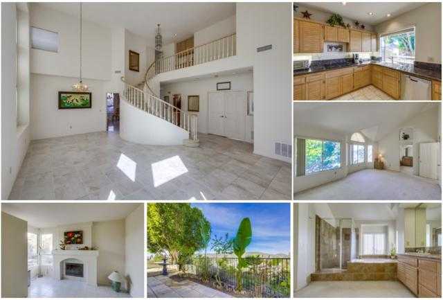 14254 Seabridge Ln, San Diego, CA 92128 (#170059730) :: Coldwell Banker Residential Brokerage