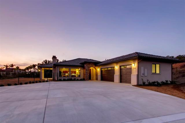31091 Rosebush Ln, Valley Center, CA 92082 (#170060696) :: Kim Meeker Realty Group