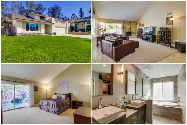 11027 Paseo Castanada, La Mesa, CA 91941 (#170060739) :: Neuman & Neuman Real Estate Inc.