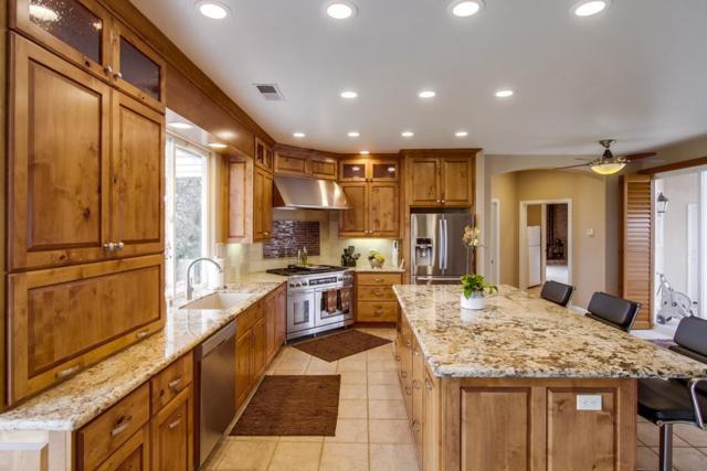 18410 Woods Hill Lane, Ramona, CA 92065 (#170060952) :: Kim Meeker Realty Group