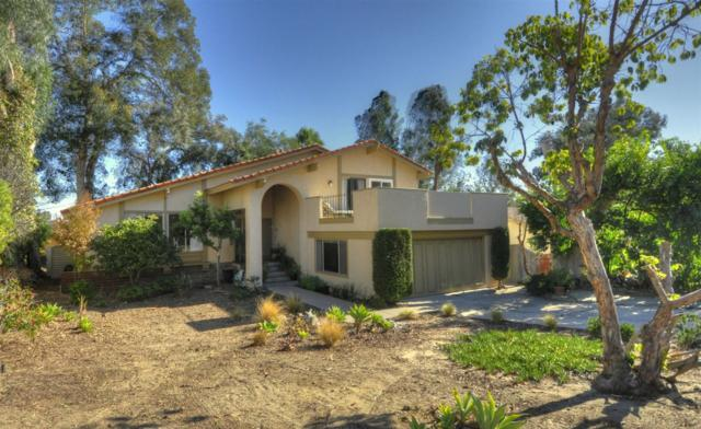 13155 Portofino Dr, Del Mar, CA 92014 (#170061808) :: Bob Kelly Team