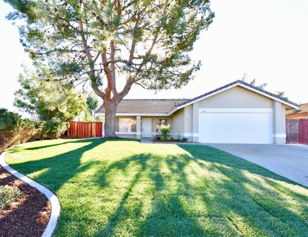 803 Point Buchon, Oceanside, CA 92058 (#170062695) :: Hometown Realty