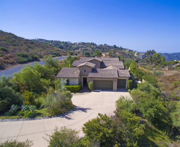 29368 Welk Highland Dr, Escondido, CA 92026 (#170063423) :: Impact Real Estate