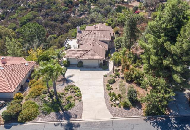 15245 Moonglow Drive, Ramona, CA 92065 (#180000141) :: Douglas Elliman - Ruth Pugh Group