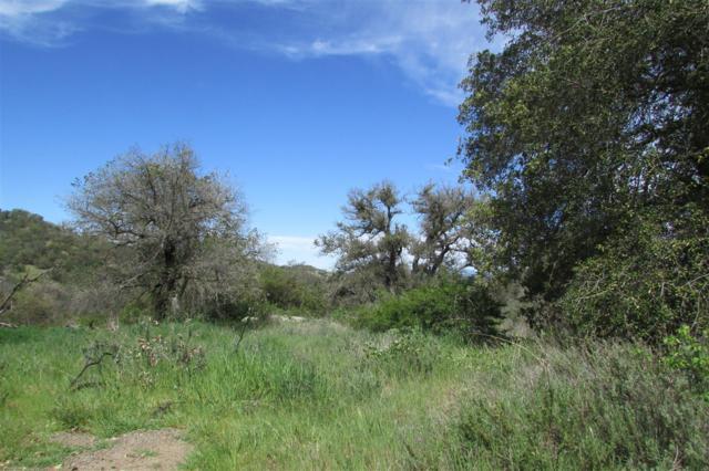 000 Oak Hill Lane #0, Santa Ysabel, CA 92070 (#180001315) :: The Yarbrough Group