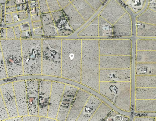 Verbena Drive #237, Borrego Springs, CA 92004 (#180001991) :: Neuman & Neuman Real Estate Inc.