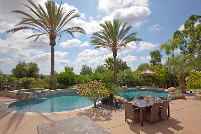 3695 Lone Dove Lane, Encinitas, CA 92024 (#180002220) :: The Houston Team | Coastal Premier Properties