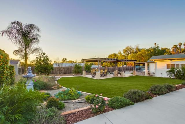 10071 Casa De Oro Blvd, Spring Valley, CA 91977 (#180002486) :: Douglas Elliman - Ruth Pugh Group