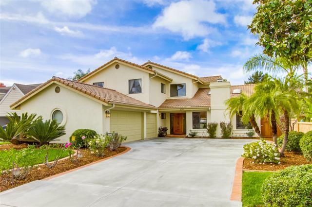 226 Meadow Vista Way, Encinitas, CA 92024 (#180002751) :: The Houston Team | Coastal Premier Properties