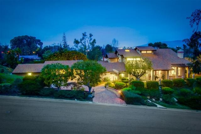 2162 Mountain Vista Drive, Encinitas, CA 92024 (#180003706) :: The Marelly Group | Realty One Group