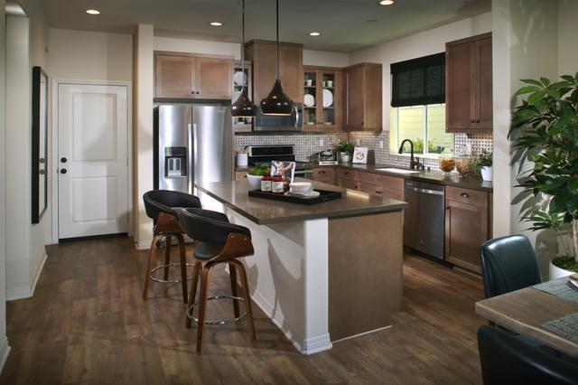 519 Surfbird Lane, Imperial Beach, CA 91932 (#180005217) :: Neuman & Neuman Real Estate Inc.