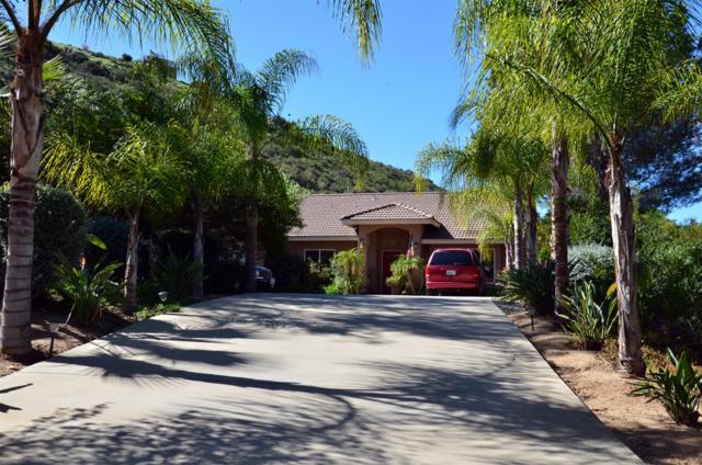 16101 Watt Way, Ramona, CA 92065 (#180005931) :: Neuman & Neuman Real Estate Inc.